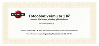 Slevový poukaz na Fotoobraz v rámu 20x30cm - dřevěný přírodní rám za 1 Kč - elektronický