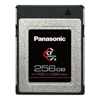 Panasonic CFexpress Typ B 256GB