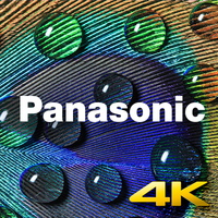 Workshop 4K Photo a techniky Focus Stacking s Panasonicem