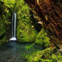 Poukaz - Individuální kurz fotografování v pohádkové krajině skal Saského Švýcarska
