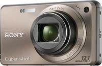 Sony CyberShot DSC-W290 bronzový