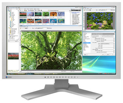 Eizo FlexScan SX2461W šedý + Zoner Photostudio 11 Eizo edition zdarma!