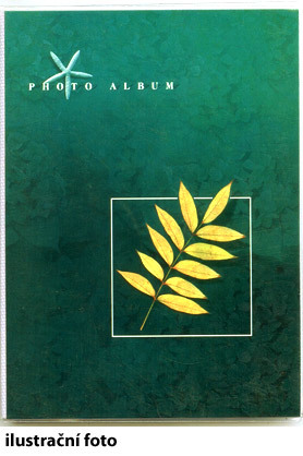 Dorr album 10x15/120
