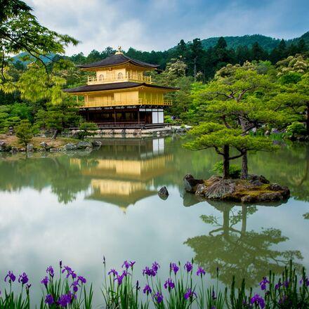 Fotoexpedice Japonsko  2019 – kvetoucí sakury