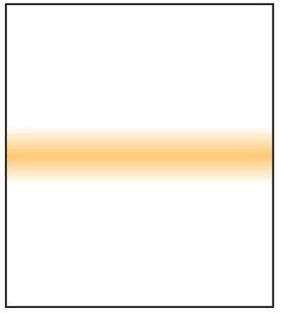 LEE Filters SW150 Pale Coral Stripe