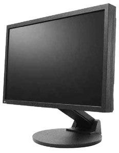 Eizo FlexScan S2431W černý