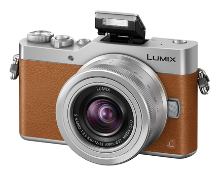 Panasonic Lumix DMC-GX800 + 12-32 mm