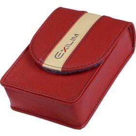 Casio pouzdro EX CASE30RD