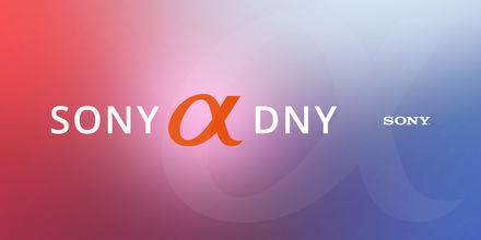Sony Alpha dny jsou zpátky! Prozkoumejte akční nabídky