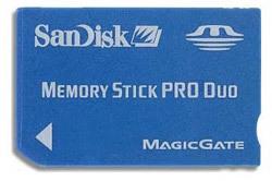 SanDisk MS DUO 2 GB