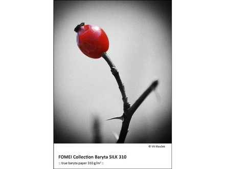 Fomei Collection Baryta SILK 310 A3+ (32,9 x 48,3cm)/50