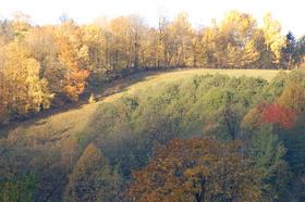 Loucna-podzim-4-.jpg