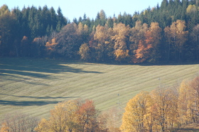 Loucna-podzim.jpg