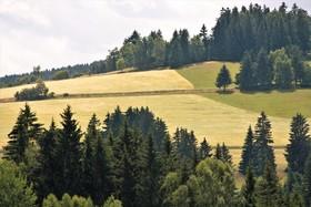 Svahy-u-Brezinek-Cesk.vrch.-2-.jpg